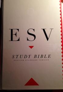 MY ESV STUDY BIBLE