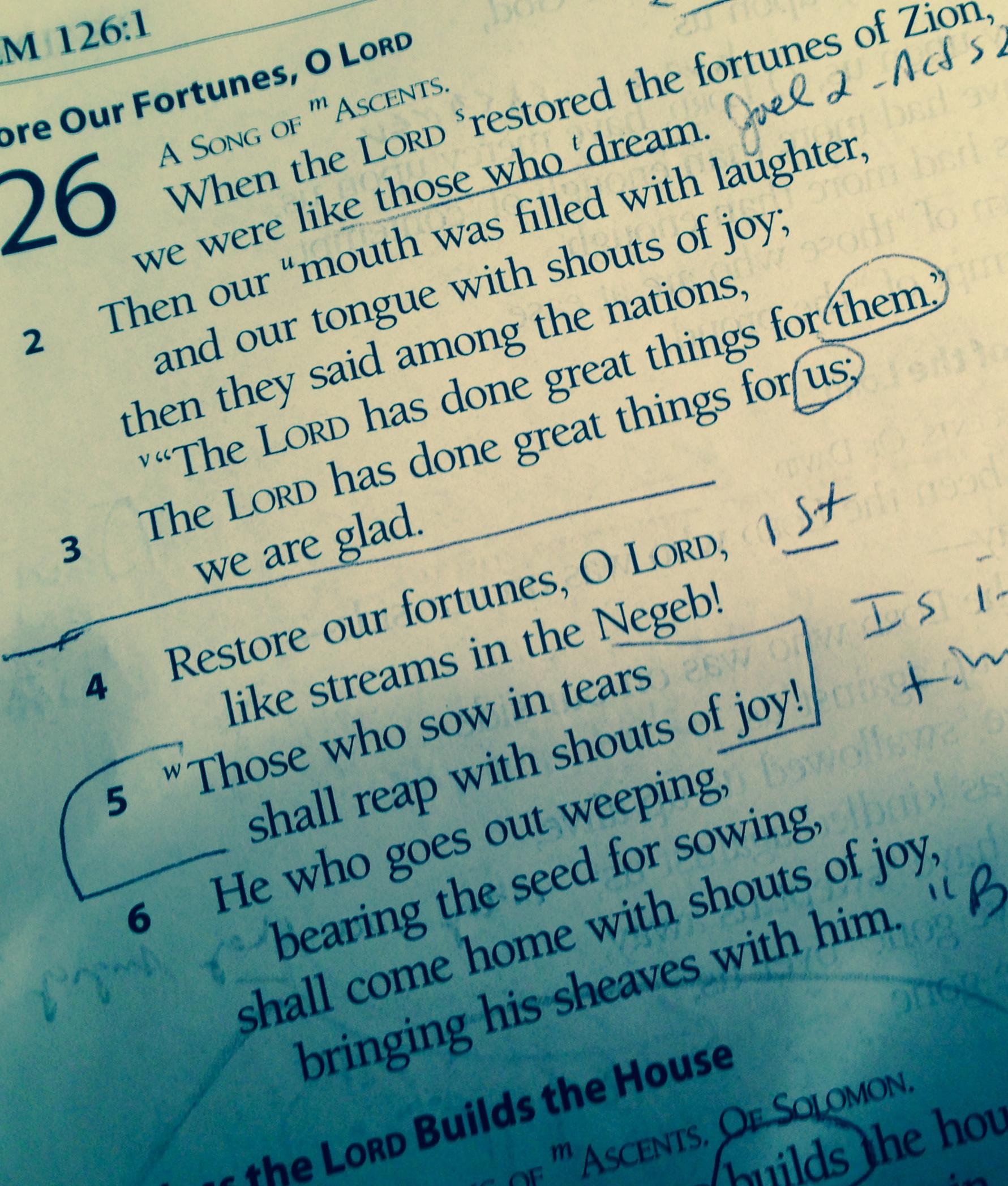 PSALM 126–A MEDITATION FOR ADVENT THREE – Pastor Greenbean